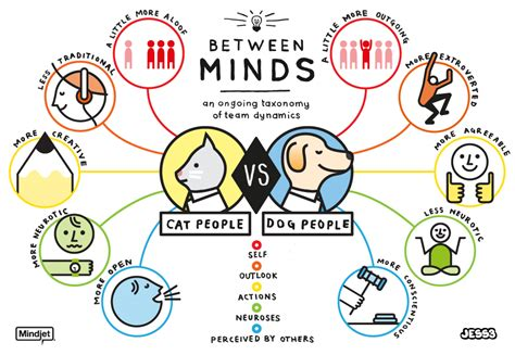 cats vs dogs cat person vs person visual ly
