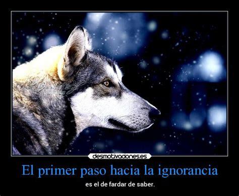 imagenes de lobos tristes usuario 111alba desmotivaciones