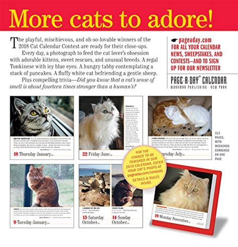 365 cats page a day calendar 2018 new free ship 1523500794 ebay