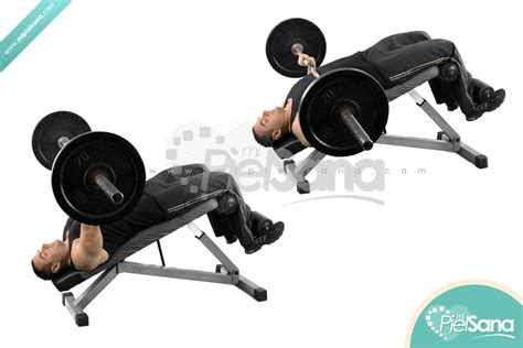decline bench press without bench pin decline bench press on pinterest