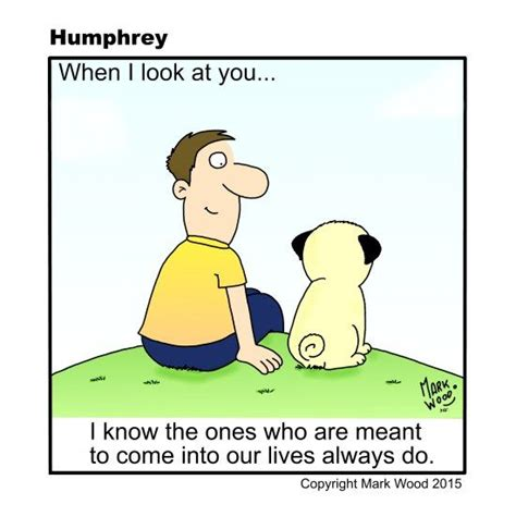 humphrey pug 17 best ideas about pug facts on animals doing things i need a