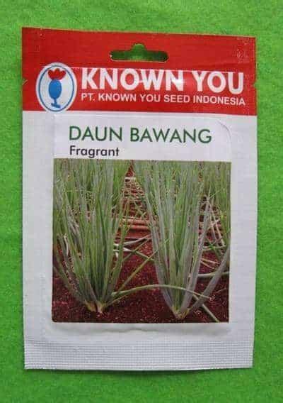 Penjual Bibit Daun Bawang jual benih daun bawang fragrant 5 gram known you seed