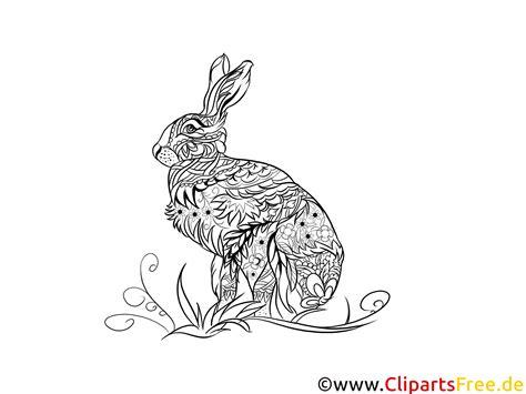 malvorlage fuer erwachsene kaninchen hase tier