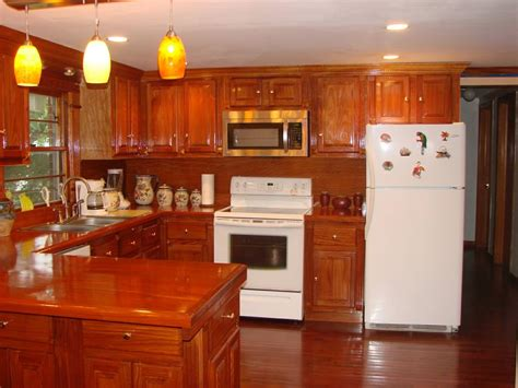 mahogany kitchen cabinets tedx designs the