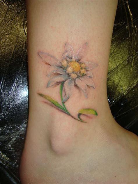 watercolor tattoo wellington 25 best ideas about edelweiss on lotus