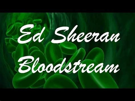 ed sheeran bloodstream lyrics ed sheeran bloodstream lyrics youtube