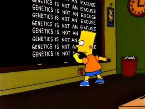 Genetics Meme - genetics not an excuse fitness pinterest genetics