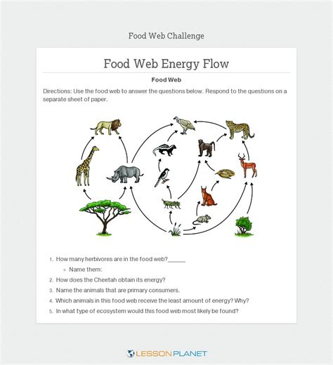 From Pond To Forest Worksheet Answers by Energy Flow In Ecosystems Worksheet Abitlikethis