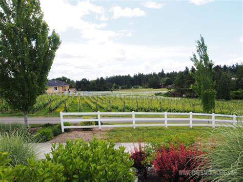 adams bench winery a local s guide to the best woodinville wineries the