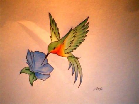 flower and hummingbird tattoo designs pictures by mcintyre