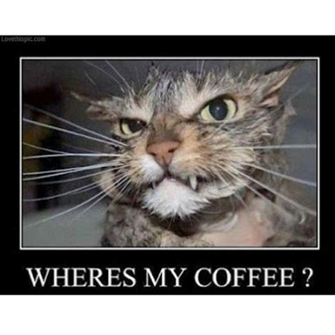 Need Coffee Meme - best 25 need coffee meme ideas on pinterest i need