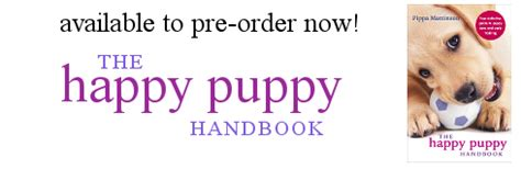 the happy puppy handbook 0091957265 labrador puppies the labrador site