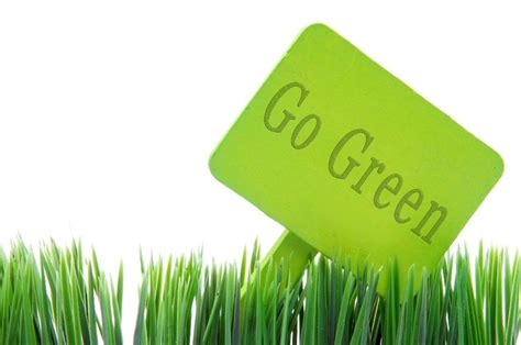 Can Go Green by 9 Ways Freelance Court Reporters Can Go Green