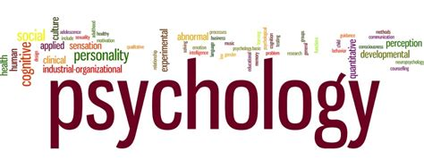 Psychology And The School graduate program department of psychology