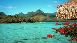 desktop background tropical background tropical