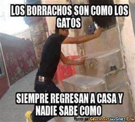 imagenes graciosas de borrachos crudos memes de internet los borrachos son como los gatos