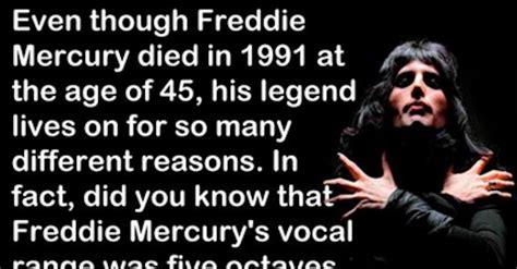 Meme Freddie Mercury - 9 reasons why freddie mercury was so boss