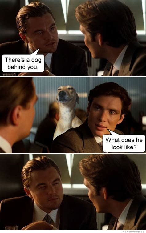 Inception Memes - there s a dog behind you weknowmemes