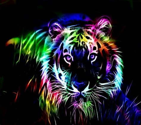 cool wallpaper download zedge download colorful tiger wallpapers to your cell phone