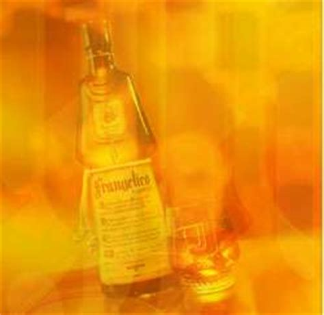 Definition Frangelico by Definition Of Frangelico