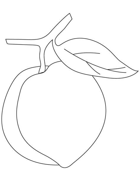 peach fruit coloring pages   peach fruit