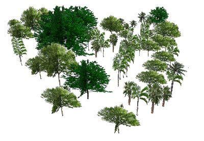 sketchup components 3d warehouse super modelers botanic