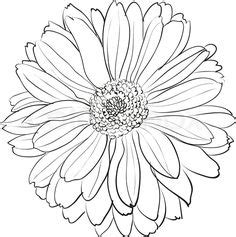 chrysanthemum drawings for tattoos japanese