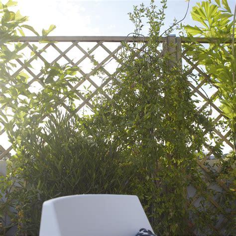 Panneaux Treillis Bois by Panneau Treillis Bois Ajour 233 Sonato L 180 Cm X H 180 Cm