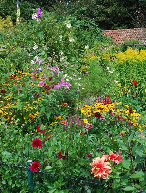 Giesebrecht Garten Und Pflanzen by Schrebergarten 06 Archiv