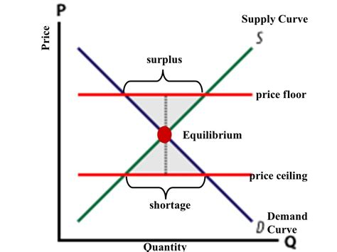 shortage diagram equilibrium what is the equilibrium and why is it