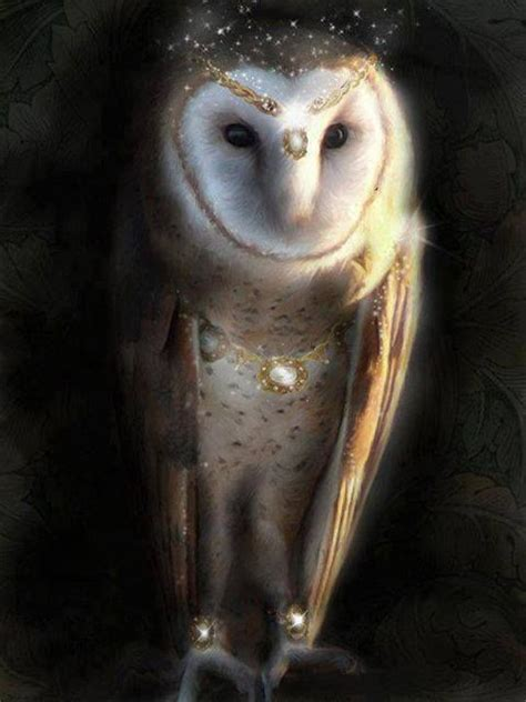 owl symbolism pure spirit the owl spirit animal is emblematic of a deep connection