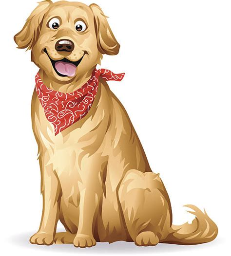 golden retriever clip golden retriever clipart pencil and in color golden retriever clipart