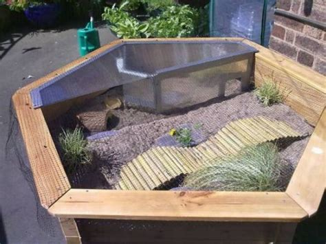 tortoise table for sale 25 best ideas about outdoor tortoise enclosure on