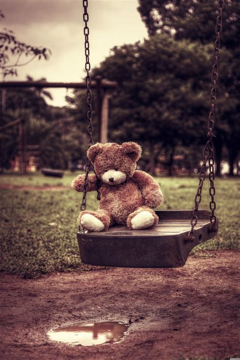 teddy bears photography contest  pictures page