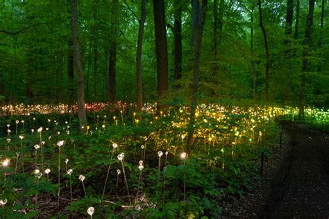 enjoy a walk through the lavish garden lights photo gallery