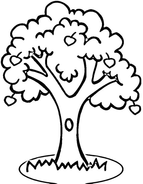 apple tree coloring page apple tree outline printable clipart best
