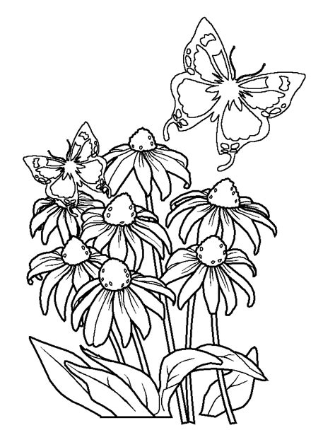 free coloring pictures of flowers and butterflies coloring pages of flowers and butterflies coloring home
