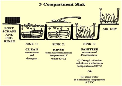 three compartment sink method pin parts of compound light microscope optical instruments