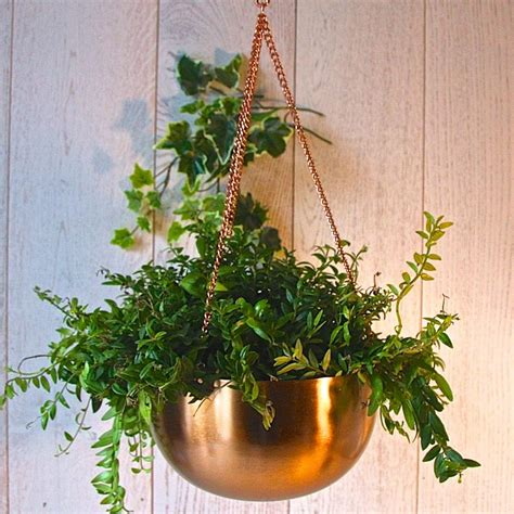 Hanging Copper Planter by Copper Hanging Bowl Planter By Garden Trading