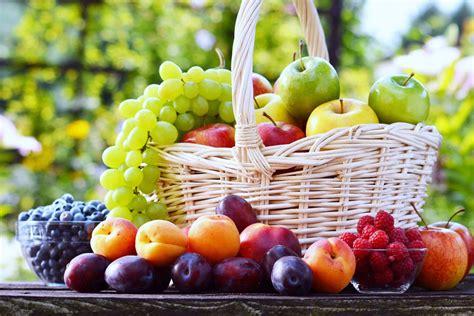 Berry Picking 2 by Fruit Picking Espybosnia