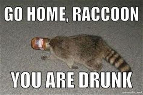 Drunk Memes Tumblr - go home you re drunk meme lol this are funny pinterest