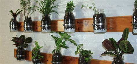 Diy Build A Mason Jar Herb Garden Jar Herb Garden Wall