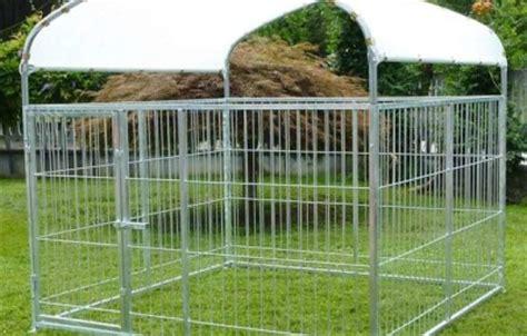 come costruire una gabbia per conigli fai da te recinti per cani fai da te terapie attuare in caso di