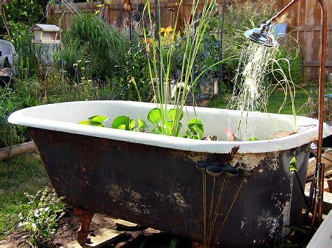 Bathtub Garden by Mini Garden Pond Construction Oases In The Garden