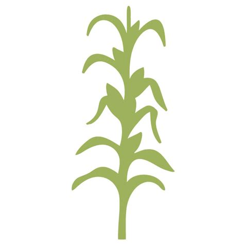 corn stalk template cornstalk wall stencil for painting or baby room mural