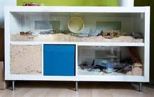 Ikea Expedit Bookcase Tv Stand Naturnahe Hamstergehege 2x4 Ikea Expedit Als Roboheim