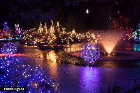 Vandusen Botanical Garden Lights Festival Of Lights At Vandusen Botanical Garden Review Foodology