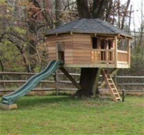 tree house design software 1000 images about tree house plans on pinterest treehouse tree houses and