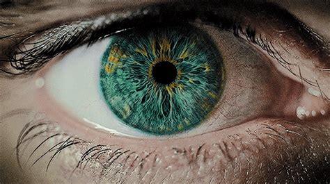 imagenes gif weed close up of eye pupils dilating gif wifflegif