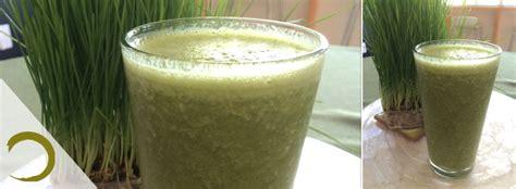 Green Garden Organics by Tuesdays Green Garden Organic S Mouthwatering Juice